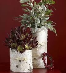 Birch Bark Vases Birch Bark Crafts And Decorating Ideas With Rustic Flair