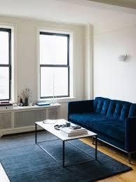 the blue velvet sofa makeahome nl