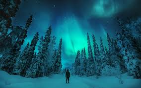 trips to see northern lights 2018 on the hunt for the northern lights visitfinland com