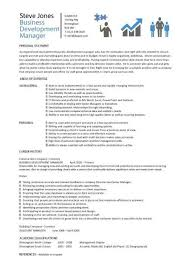 curriculum vitae sles india pdf map business development manager cv template managers resume