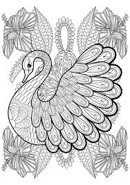 swan zentangle coloring pages coloring