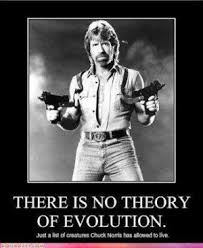 why chuck norris is worthy of praise rather than parody return of