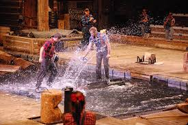 discover the magic of the pigeon forge shows with the whole family
