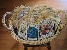 cheap seed packets 25 best seed wedding favors ideas on inexpensive
