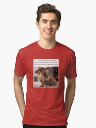 Hipster Dog Meme - dank meme funny indie hipster dog tri blend t shirt by