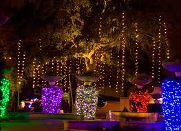 zoo lights art stuff by k