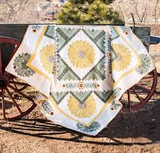 quilt kits for beginners makes it easy to be creative