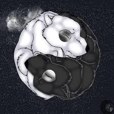 yin yang wolf by shemha on deviantart