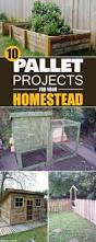 10 genius pallet projects for your homestead