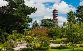 photo of kew gardens chinese pagoda
