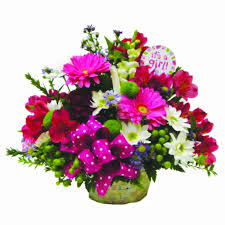 basket of flowers baby girl flowers clarence ny lipinoga florist