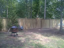 why a fence is better than a hedge for your garden fence me in