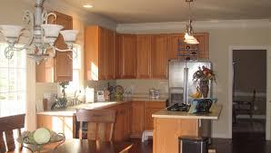Kitchen Cabinets Online Design Tool Cabinet Rta Kitchen Cabinets Beautiful Rta Cabinet Store Classic