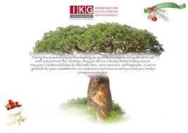 wish you and your family a happy thanksgiving indigo kulani group indigo kulani twitter