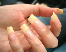 nails up gallery