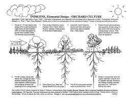 INDIGENOUS WELCOME  Orchard Food Production Efficiencies - Backyard orchard design