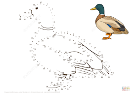 mallard duck dot dot free printable coloring pages
