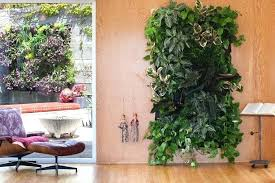 indoor wall herb garden put outside on the lanai with different