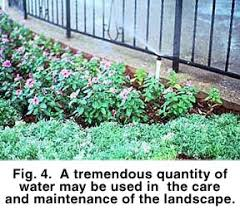 efficient use of water in the garden and landscape earth kind