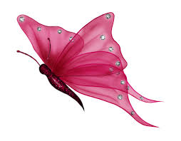butterfly png butterfly4 png photo by just4udesigns
