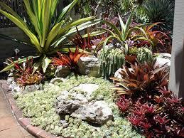 Cactus Garden Ideas Cactus Garden Ideas Homedesignlatest Site
