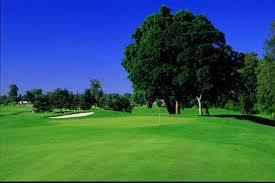 trysting tree golf club in corvallis