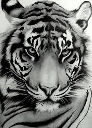 beautiful tiger tat tats tatting tigers and