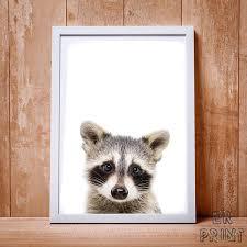 Raccoon Nursery Decor Raccoon Print Raccoon Wall Nursery Animal Print Nursery