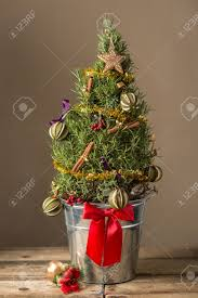 miniature tree in a silver pot with a bow and