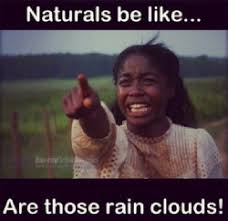 Black Girl Memes - 28 of our favorite natural hair memes black girls memes and natural