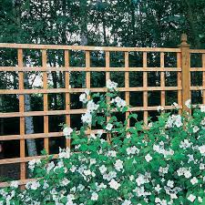 fresh cheap garden trellis ideas 7560