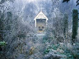 winter gardens hgtv