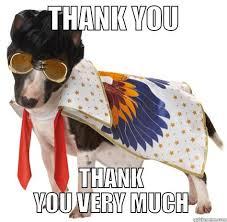 Thank You Very Much Meme - elvis dog quickmeme