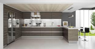 Best Modern Kitchen Cabinets Kitchen 40 Modern White Wood Kitchen Cabinets Decorating