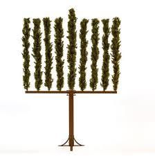 menorah tree of this is real menorah tree jstyle