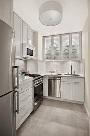 Modern Kitchen Cabinets Nyc Nyc Kitchen Cabinets Home Decoration Ideas