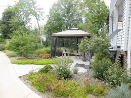 designing a xeriscape for all seasons a continuation bobbie u0027s