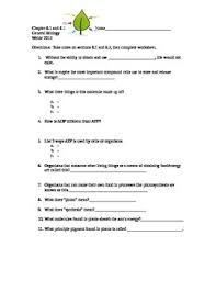 all worksheets grade 10 biology worksheets free printable