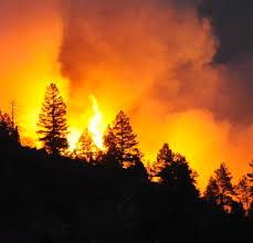 Wildfire Ranch by Homes Near Conifer Colorado Photos Colorado Wildfires 2012