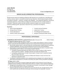 sales resume format professional sales resume template exles of federal resumes
