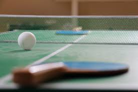 Ping Pong Table Cheap Plans For Building Your Own Table Tennis Or Ping Pong Table