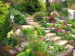 Small Kitchen Garden Ideas Garden Design Front Of House With Yard Rock Landscaping Ideas For