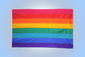 Aromantic Flag Original 8 Stripe Rainbow Pride Flag 3 U0027 X 5 U0027 Flag