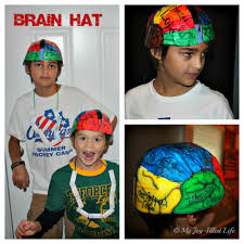 human body unit brain u0026 nerves my life human body and brain