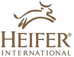 heifer international heifer international belflex