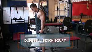 dumbbell bench squat how to do dumbbell bench squats youtube
