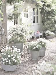 192 best gardens and flowers in white images on pinterest white