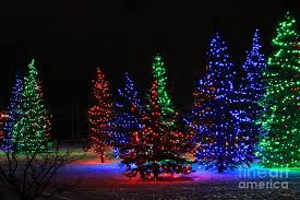 high quality christmas tree lights wallpaper full hd pictures