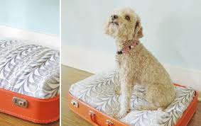 Diy Dog Bed 9 Everyday Items Begging To Be Turned Into Diy Dog Beds Barkpost