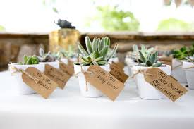 succulent wedding favors a springtime wedding the magazine